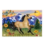 Mt. Country Buckskin Horse Postcards (Package of 8