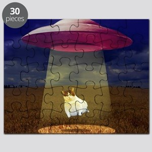 Abducted Puzzle