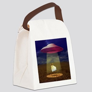 Abducted Canvas Lunch Bag