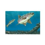 Turning to Strike: Rectangle Magnet (100 pack)