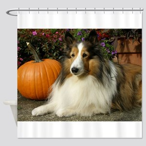 best pumpkin pic cropped Shower Curtain