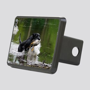 w page Rectangular Hitch Cover