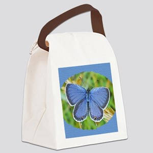Eastern Tailed Blue Butterfly Pho Canvas Lunch Bag