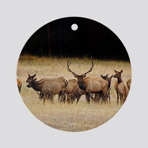 Elk 9x12 Round Ornament
