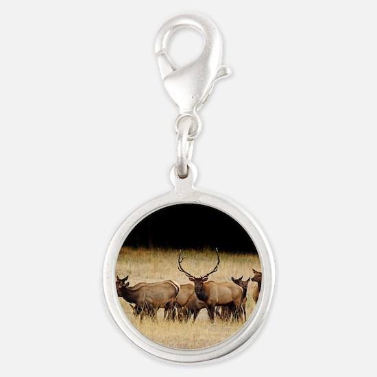 Elk 9x12 Silver Round Charm