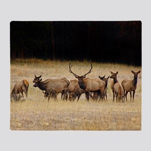 Elk 9x12 Throw Blanket