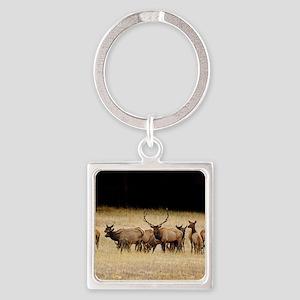Elk 9x12 Square Keychain