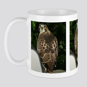 Print14x6 Mug