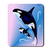 Orca Home Decor