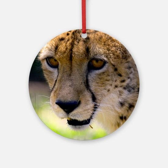 (15) Cheetah 9120 Round Ornament