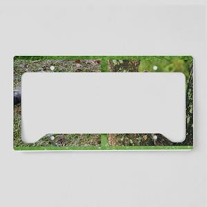 PrintRaB14x6(242) License Plate Holder