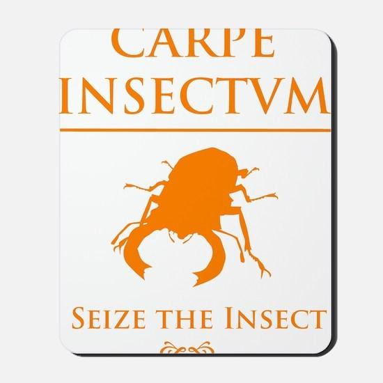 Carpe Insetum D orange 2 Mousepad