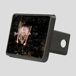 Vampire Bat 4394 for Greet Rectangular Hitch Cover