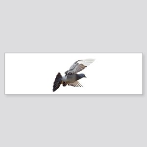 pigeon fly to love joy peace Bumper Sticker