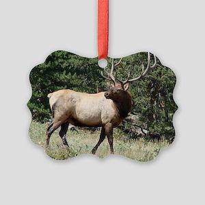 Elk Picture Ornament