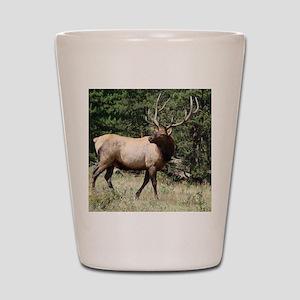 Elk Shot Glass