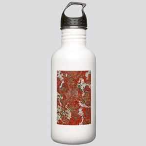 Shasta1 Stainless Water Bottle 1.0L