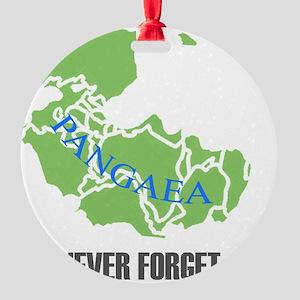NF Pangaea-1 Round Ornament