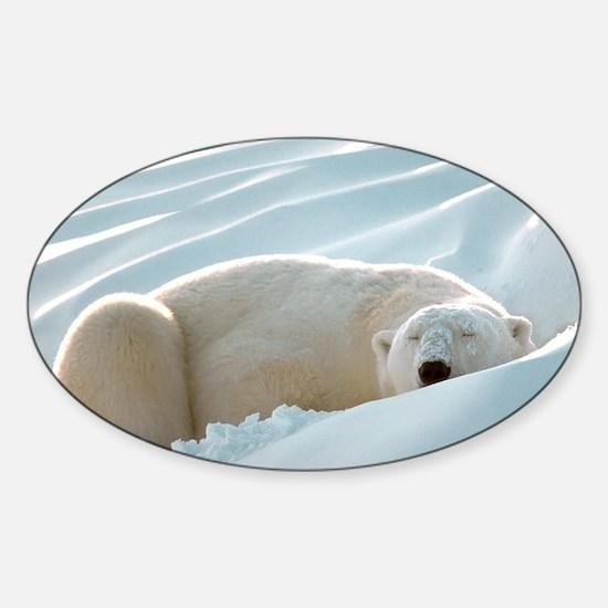 polarsbears5 Sticker (Oval)