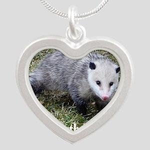 BDPossGrtCd Silver Heart Necklace