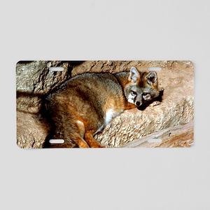 fox0001fin Aluminum License Plate