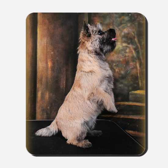 Pippen5Sittingpretty2 Mousepad