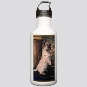 Pippen5Sittingpretty2 Stainless Water Bottle 1.0L