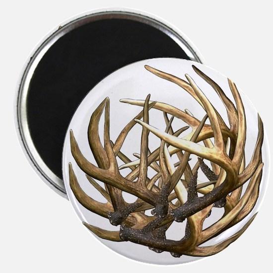 Whitetail Buck Deer Antler Art Cluster Magnet