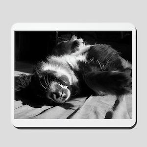 Berner Sleeping Mousepad