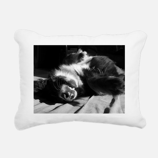 Berner Sleeping Rectangular Canvas Pillow