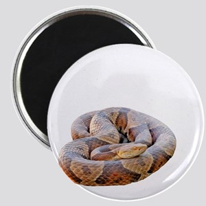 copperhead-shirt-no-bg Magnet