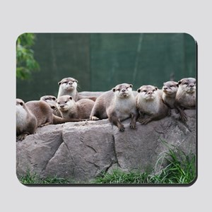 Otter family Mousepad