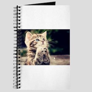 Praying Kitty Journal