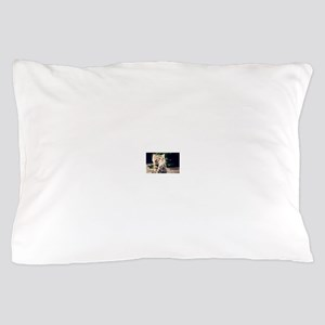 Praying Kitty Pillow Case
