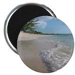 """Turks & Caicos Beach 2.25"""" Magnet (10 pack)"""