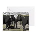 Elephant Eyes Woodcut Greeting Cards (Pk of 20)