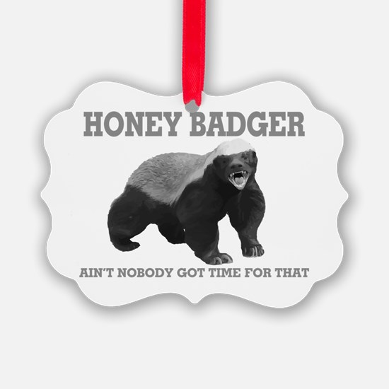 Honey Badger Ain't Nobody Got Time For That Pictur