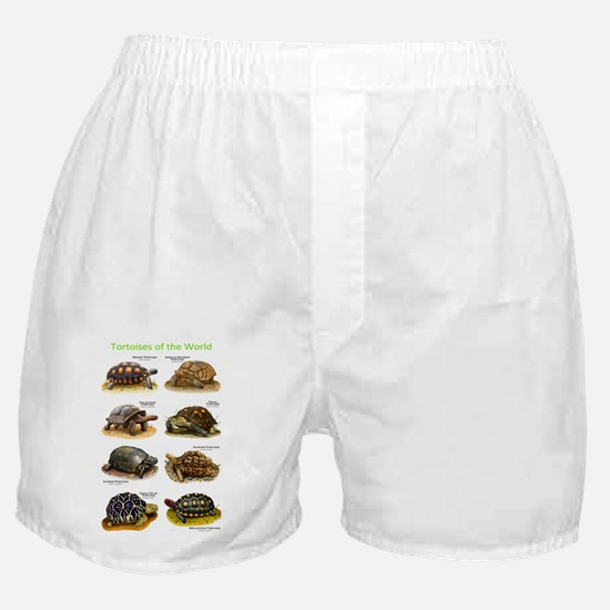 Tortoises of the World Boxer Shorts