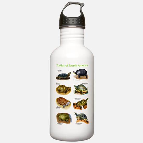 Turtles of North Ameri Water Bottle