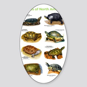 Turtles of North America Sticker (Oval)
