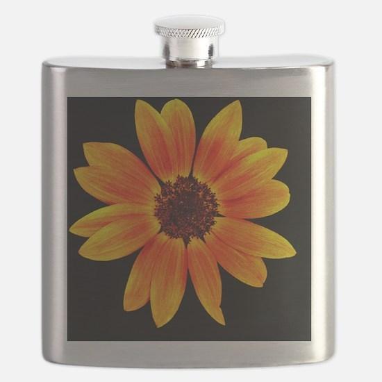 Fire Sunflower Over Black Flask