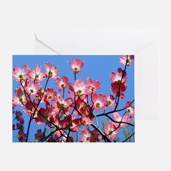 2-Spring  Note Cards pink dogwoods ( Greeting Card