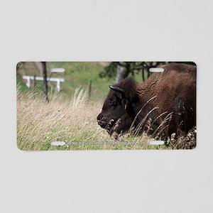 Buffalo I Aluminum License Plate