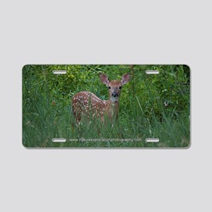 Whitetail Fawn I Aluminum License Plate