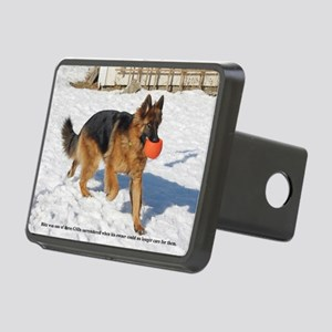 01.blitz copy Rectangular Hitch Cover