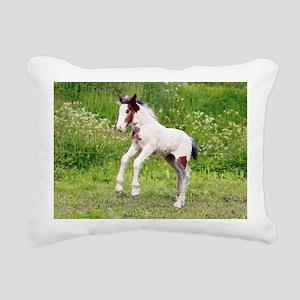 ic_6 Rectangular Canvas Pillow