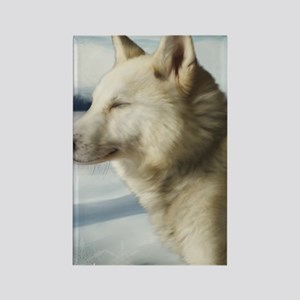 Wolf Thank You Card Rectangle Magnet