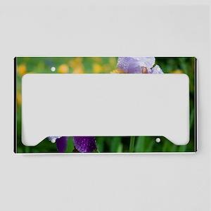 irisatalices4calendar License Plate Holder