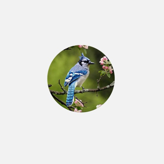 Blue Jay Mini Button