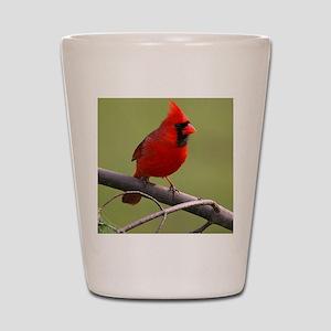 Northern Cardinal Shot Glass
